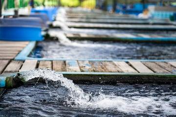 bigstock-Water-Flow-Treatment-System-Fr-366843130